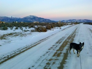 Sunset Walk, El Prado, NM